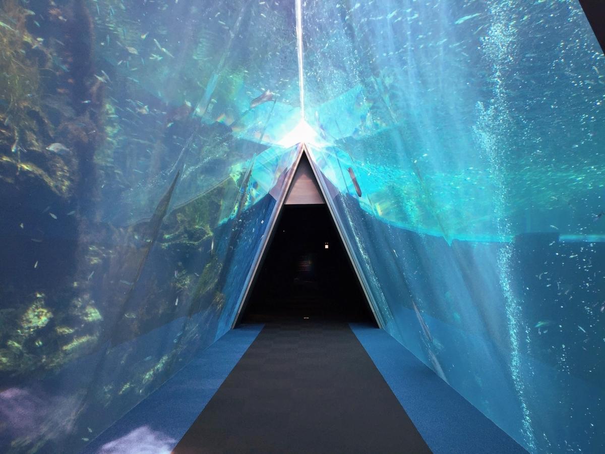 福島 水族館